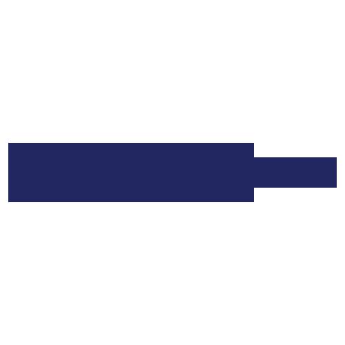 Logo_MWCHEMINDO